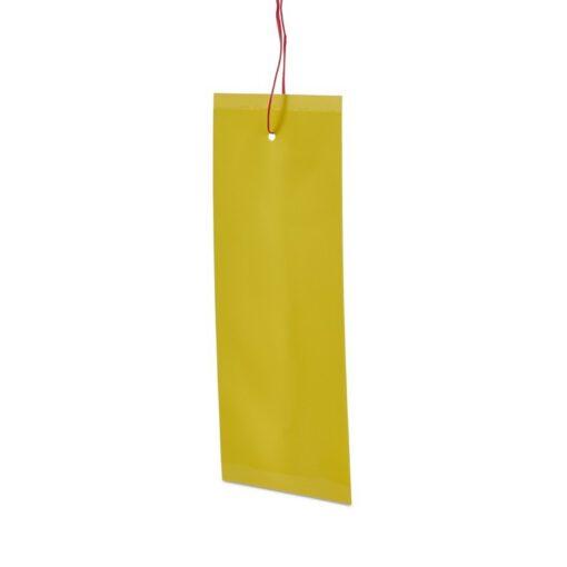 הלוחית הצהובה M