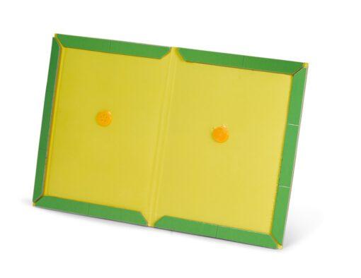 ספר ירוק - גרין בוק