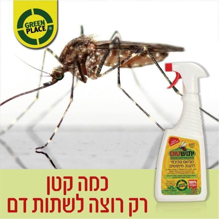 דוחה יתושים לחצר
